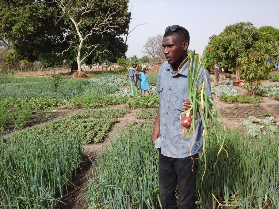 MiGranodeArena ( micro mecenatge) Aigua X Senegal